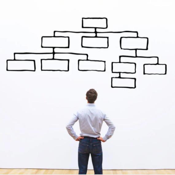 Taxonomia e marketing: defina seu produto e venda melhor